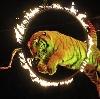 Цирки в Кирове